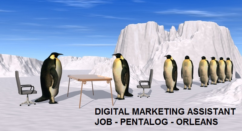 digital-marketing-assistant-job-pentalog