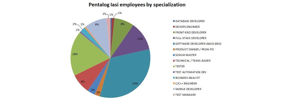 Pentalog Iasi employees by specialization